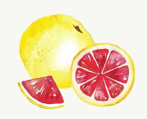 Grapefruit Passion
