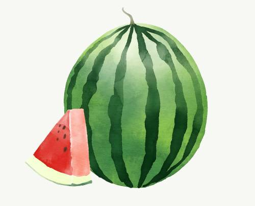 Watermelon World